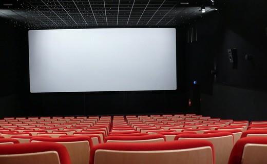 Année record pour le cinéma en France