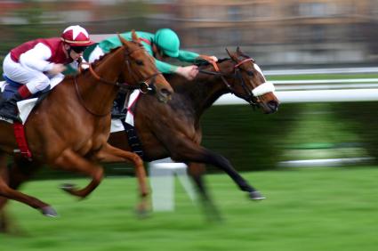 Investissement dans les chevaux de course