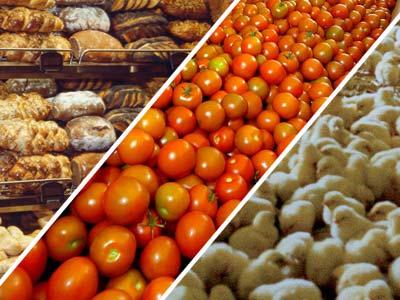 Le plan industriel agroalimentaire « pour une alimentation sûre, saine et durable » nécessite un investissement conséquent