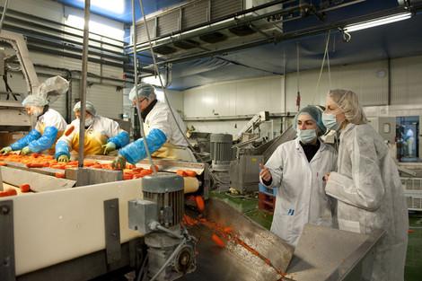 Le plan industriel agroalimentaire